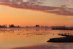 Gedragsregels Nationaal Park De Alde Feanen
