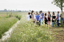 Vier De Alde Feanen: zonovergoten natuurfestival trekt duizenden bezoekers