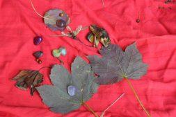 Knutselen met natuurlijke materialen in Earnewâld (6+)