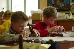 Jeugdexcursie: uilenballen pluizen voor jonge natuuronderzoekers (6+)