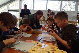 Jeugdexcursie: uilenballenpluizen voor jonge natuuronderzoekers (6+)