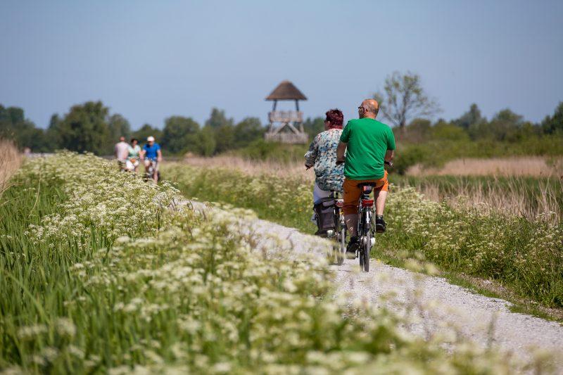fietsen nationaal park de alde feanen