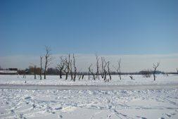 Fotografeer het winterdecor van de Lytse Mear (12+)