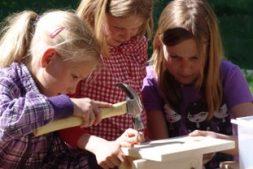 Nestkastjes timmeren voor kids in Earnewâld (8+)